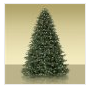 RealChristmasTree1111